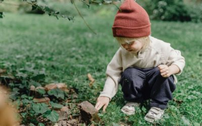 Autism Spectrum Disorders and Pyrroles